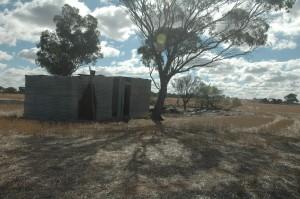 The Australian Iron Shack