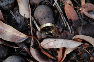 The Lost Gold Wedding Ring found in roadside leaf litter!
